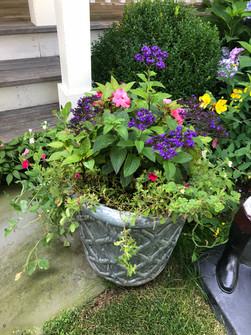 Flower Pot Design & Maintenance  - G02
