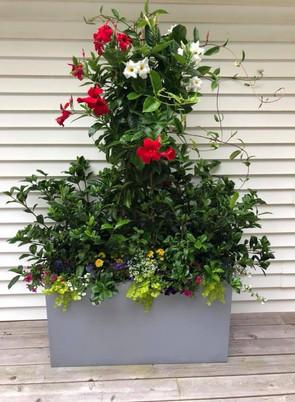 Flower Pot Design & Maintenance - 08