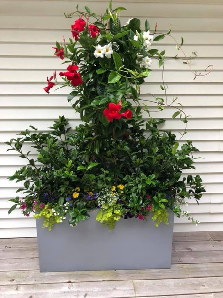Flower Pot Design & Maintenance - G07