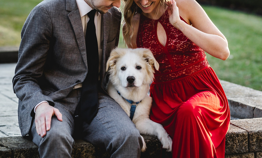 white fluffy dog sitting between his favorite humans, one's in a gray suit and the other is in a red dress