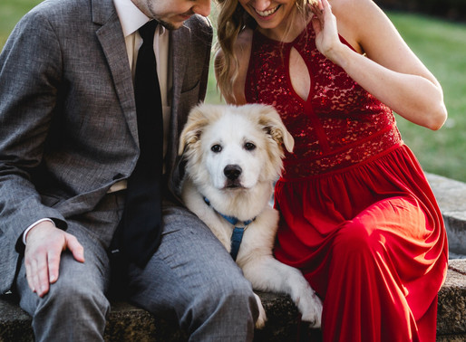 How to Include Your Dog in Your Engagement Photo Session