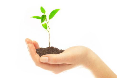 Kontakta GROW redovisning & utveckling