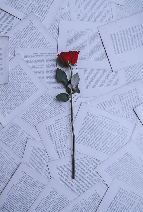 annie-spratt-rose%20on%20papers_edited.jpg