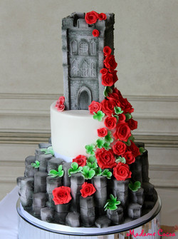 Belfast/Glastonbury wedding cake
