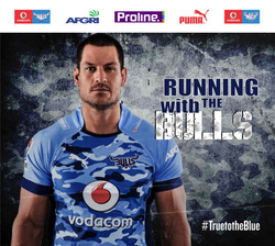 Blue Bulls - Lift Wallpaper