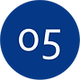 05 Icon.png