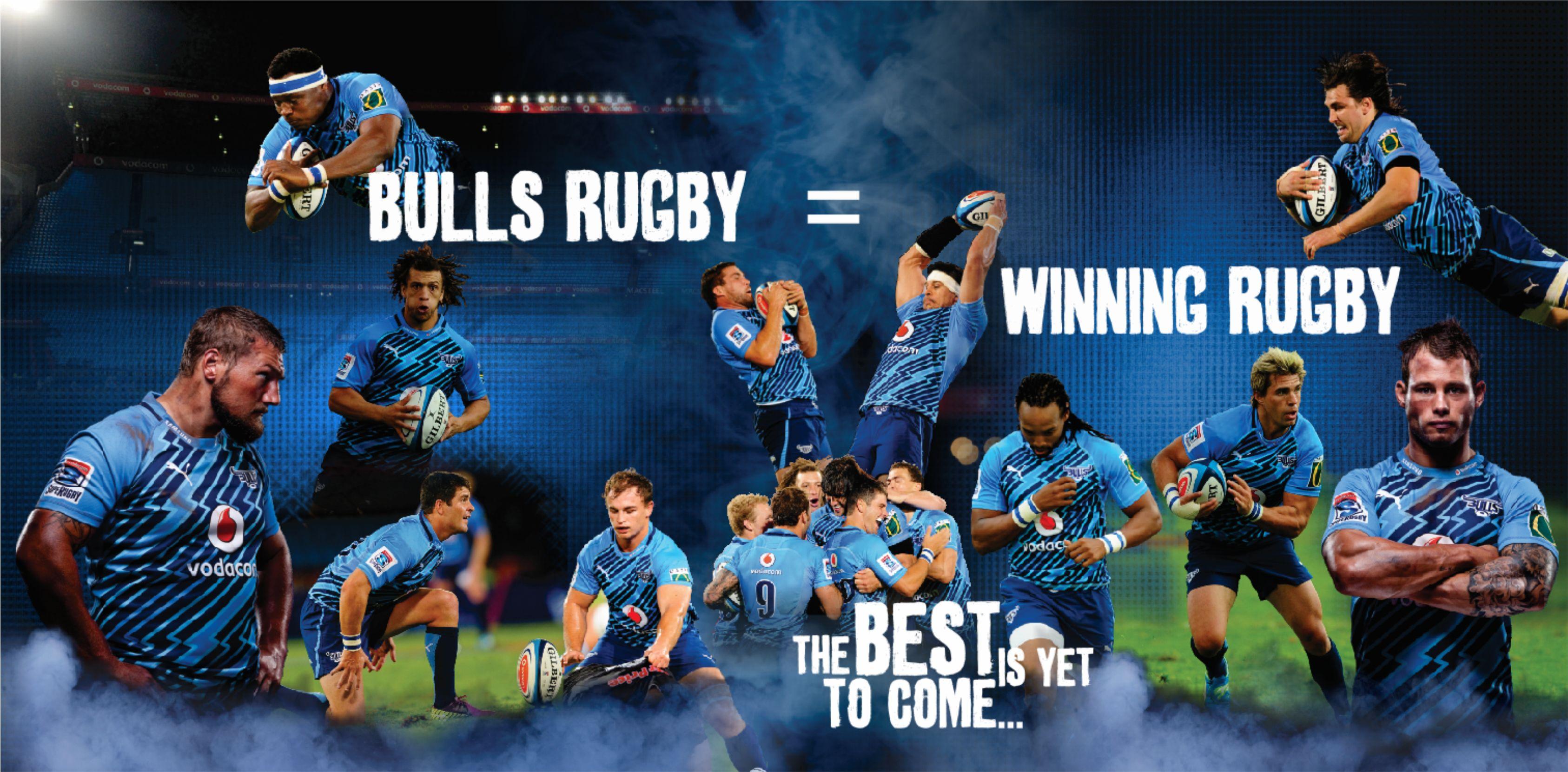 Blue Bulls - Wallpaper