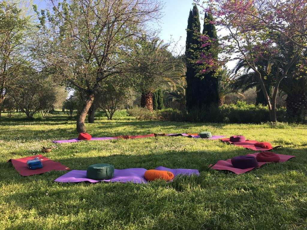 Méditation dans le jardin