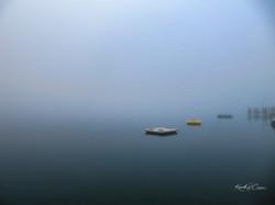 foggy morn-1-1