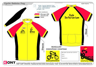 Maillot Performance-01 - 2020.jpg