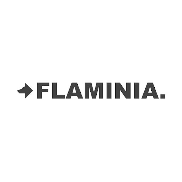 Flaminia.jpg