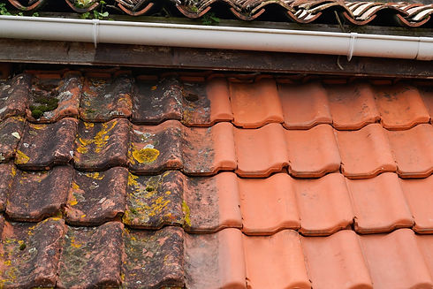 10-qualities-to-look-for-in-a-roof-cleaning-company.jpg