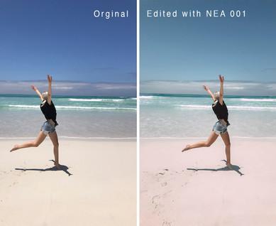 NEA 001.jpg