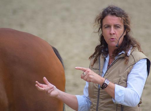 Fortbildungen für Pferdeexperten