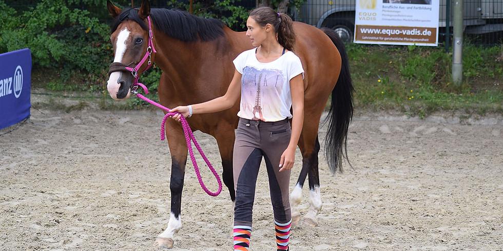 (PFT) + (PGT) Bewegungslehre Pferd und Mensch/Exterieurbeurteilung und vertiefende Biomechanik (1)