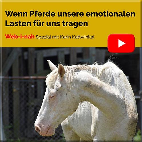 """""""Wenn Pferde unsere emotionalen Lasten für uns Tragen"""""""