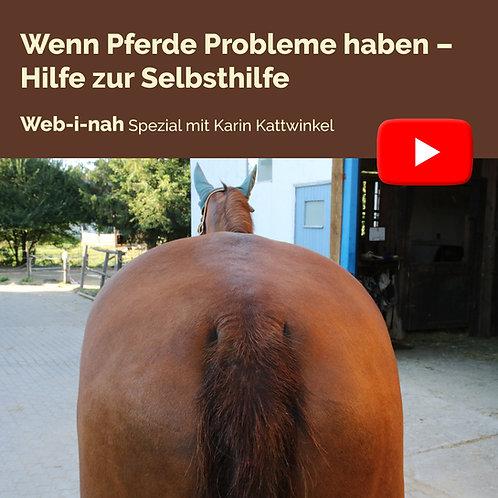 """Modul 3: """"Wenn Pferde Probleme haben – Hilfe zur Selbsthilfe"""""""