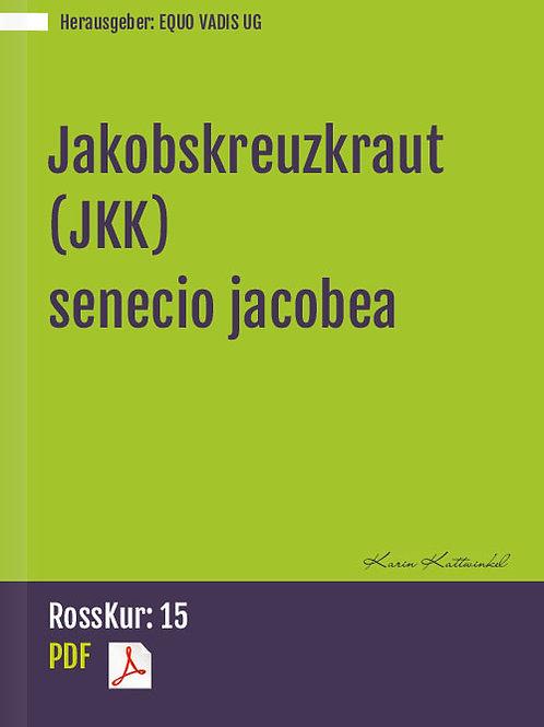 Jakobskreuzkraut (JKK) - senecio jacobea