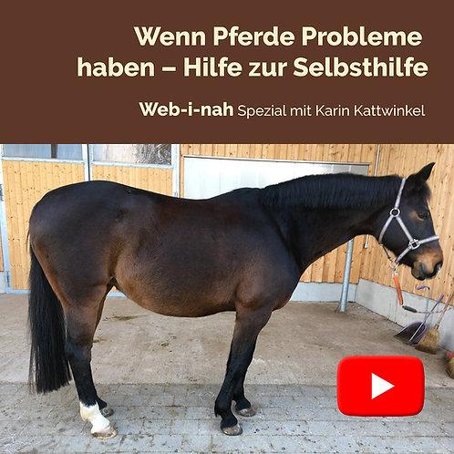 """Modul 7: """"Wenn Pferde Probleme haben – Hilfe zur Selbsthilfe"""""""
