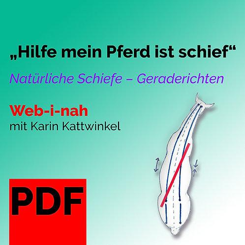 """PDF """"Hilfe mein Pferd ist schief"""""""