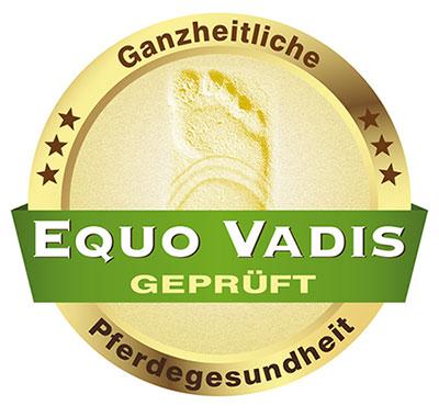 Equo Vadis Lehrinstitut