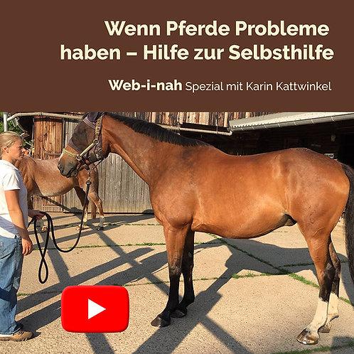 """Modul 6: """"Wenn Pferde Probleme haben – Hilfe zur Selbsthilfe"""""""