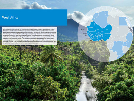 Unlocking Africa's Carbon Market
