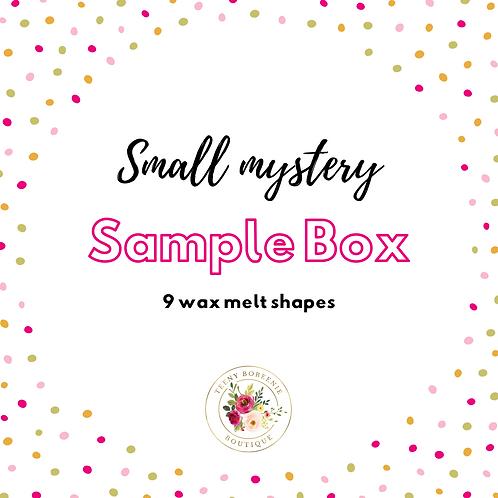 Small Mystery Sample Box