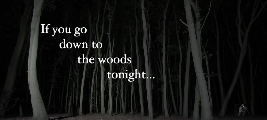 If You Go Down to the Woods Tonight...
