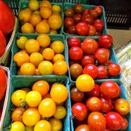 Fredericton Boyce Farmer's Market