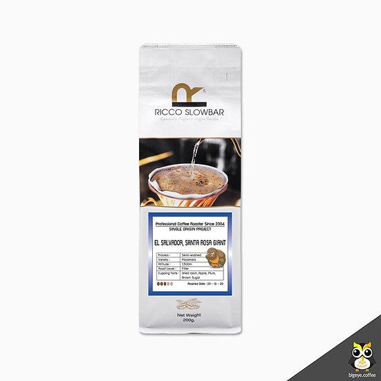 เมล็ดกาแฟคั่วพิเศษ! EL SALVADOR, SANTA ROSA GIANT Semi-Washed Process