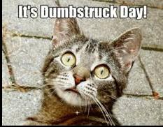 Dumbstruck, marketing bit, triggers, a Kaleidoscope review and recent releases.