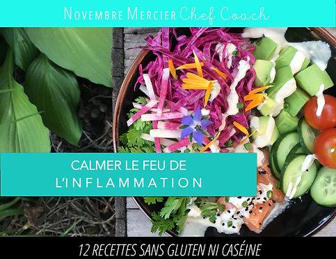 eBook CALMER LE FEU DE L'INFLAMMATION