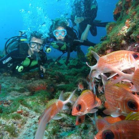 08/06 - Dia mundial dos oceanos