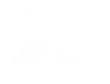 Palm Bay Guitars logo white (no writing)
