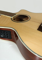 TC102A body and preamp.JPG