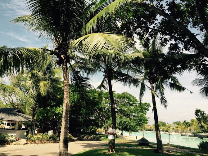 sebu島