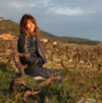 Lizann Grupalo and Peljesac Peninsula vineyards_Dalmatia Coast