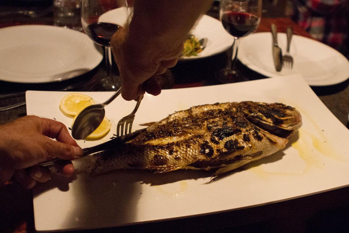Fresh-caught-fish_Kordic-Family-Restaura