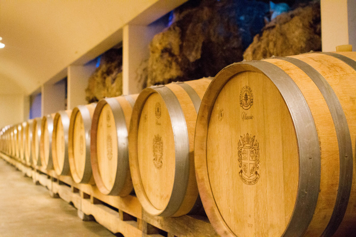 Barrel-room_Saints-Hills-Winery_Peljesac