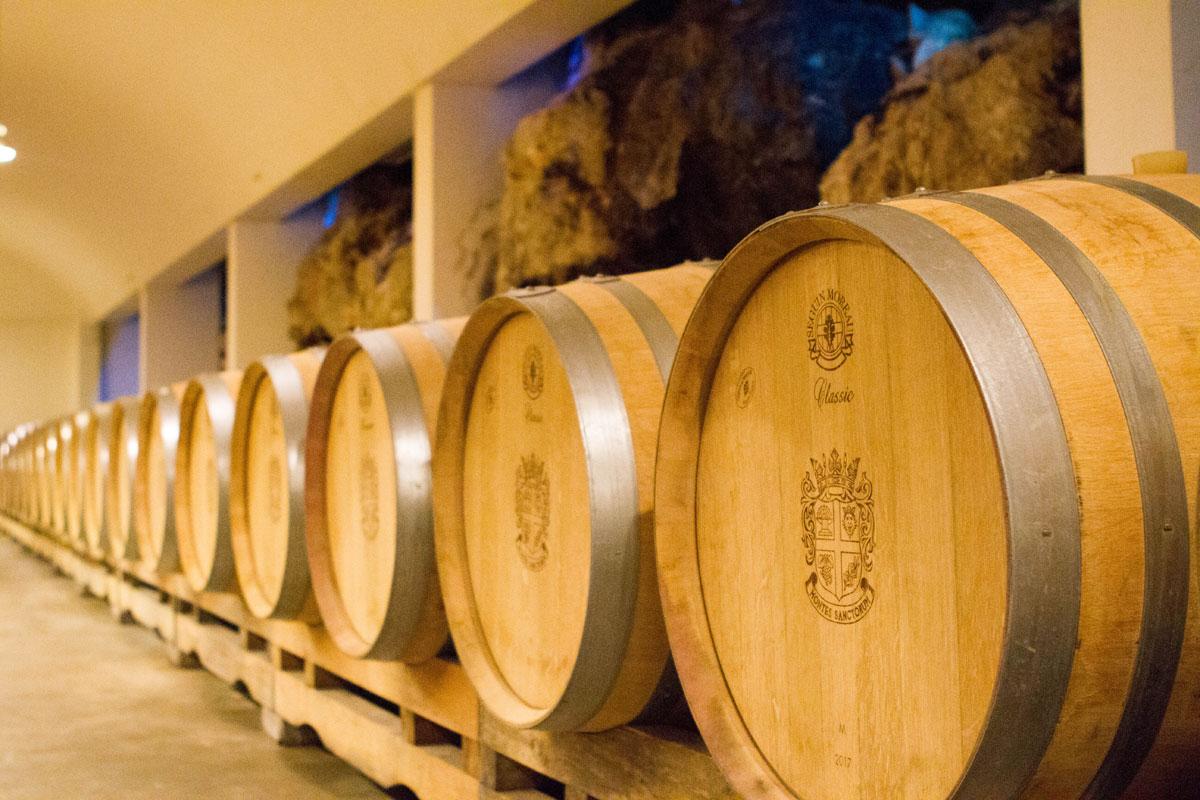 Barrel-room_Saints-Hills-Winery_Peljesac