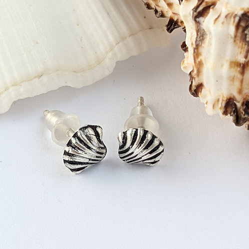 Sustainable Silver Clam Sea Shell Stud Earrings