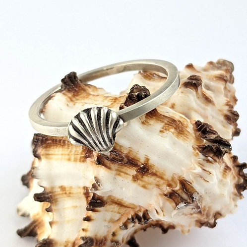 Sustainable Brushed Matt Silver Sea Shell Stacking Ring