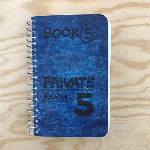 Lee Lozano, Private Book 5