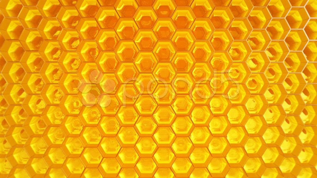 honeycomb-honey-healthy-natural-organic-