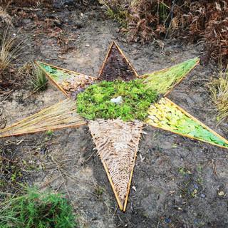 Land art star