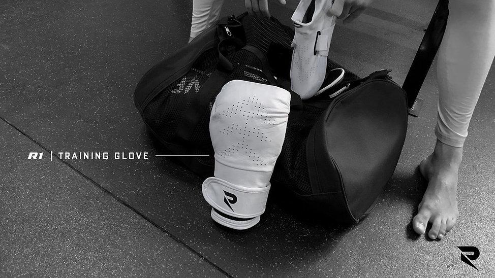 GloveImage.JPG