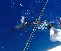 Sports Fishing Private Fishing Trips