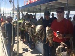 Year round fishing trips
