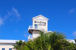 birdingcam